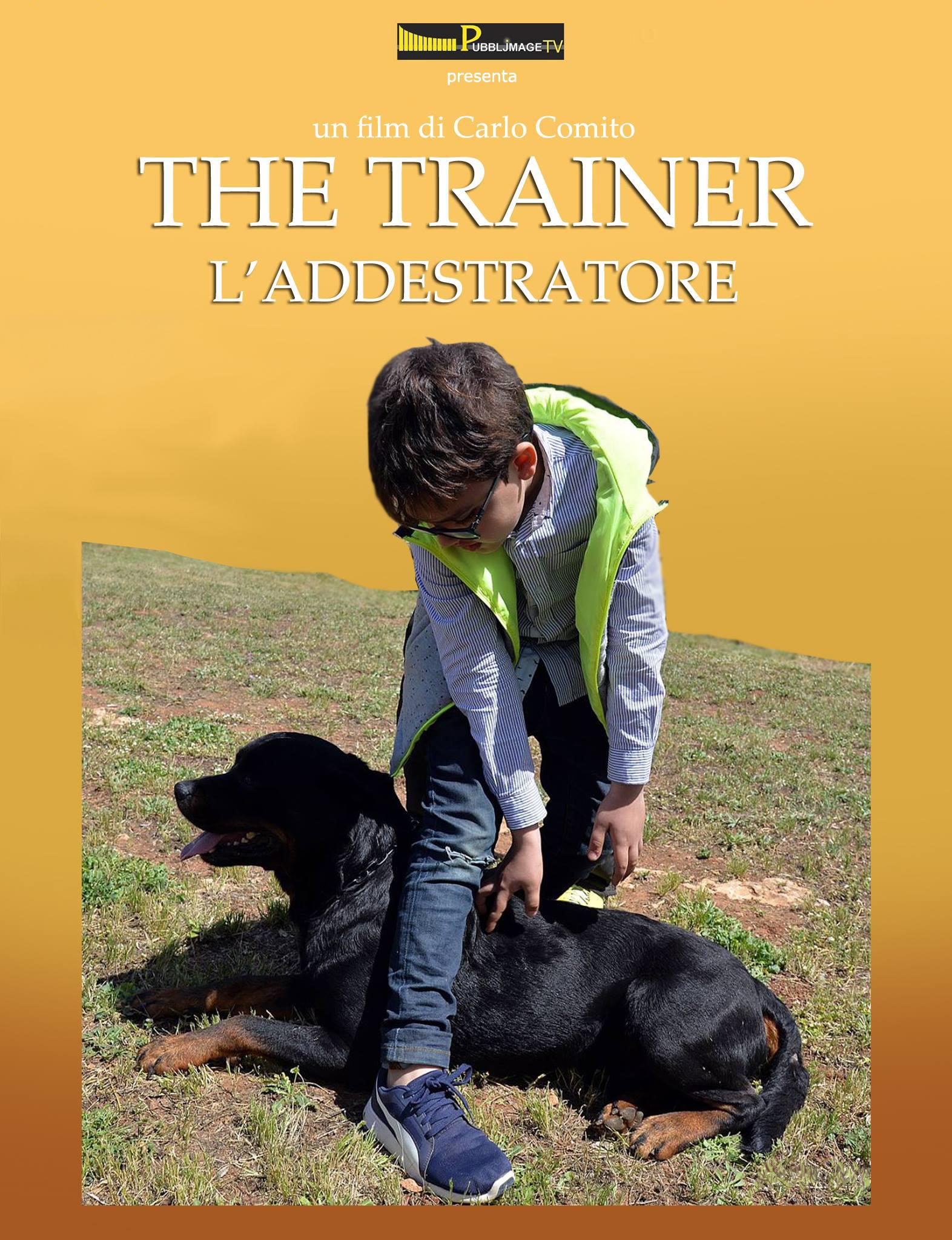 the-trainer-manifesto4324622_10209778230233666_2179813061515820473_o-copia